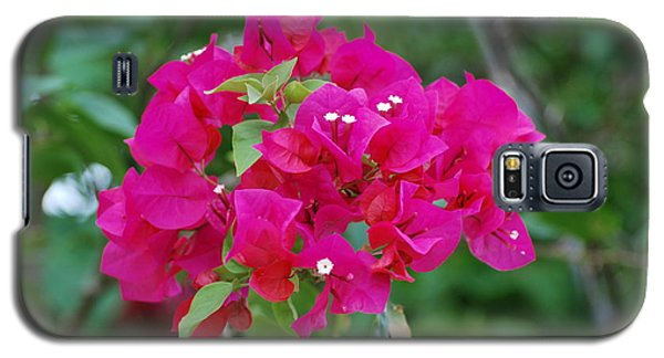 Galaxy S5 Case featuring the photograph Flowers by Rob Hans