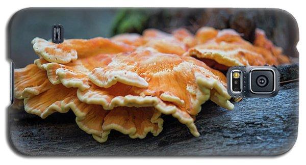 Flowing Fungus Galaxy S5 Case
