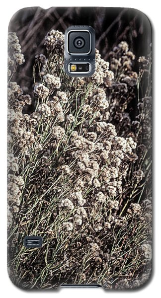 Fluff And Seeds Galaxy S5 Case