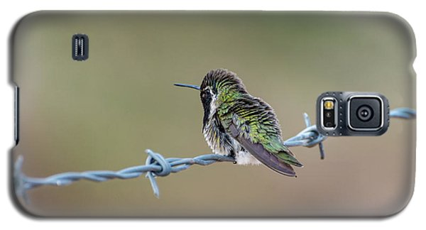 Fluffy Hummingbird Galaxy S5 Case