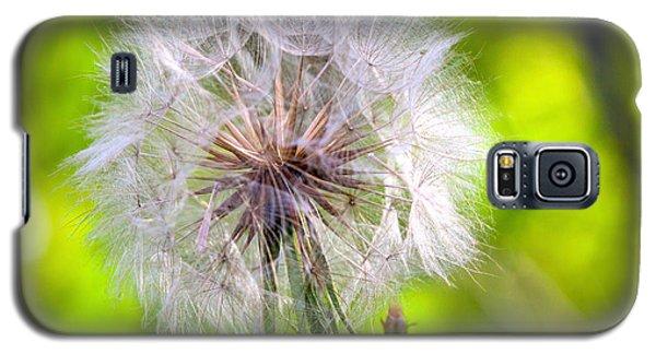 Fluffy Galaxy S5 Case