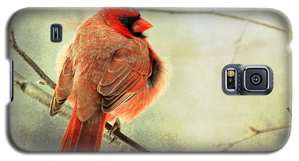 Fluffy Winter Cardinal Galaxy S5 Case