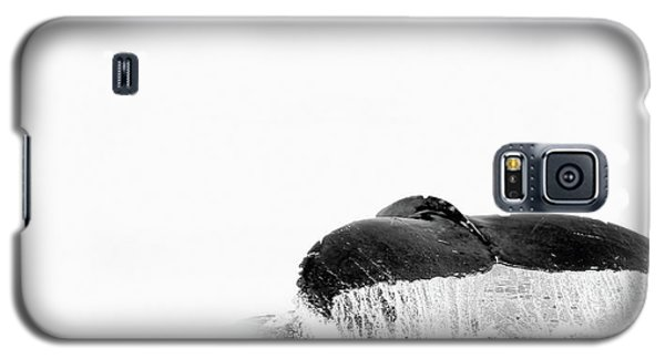 Flute Galaxy S5 Case