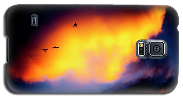 Fly Away Galaxy S5 Case
