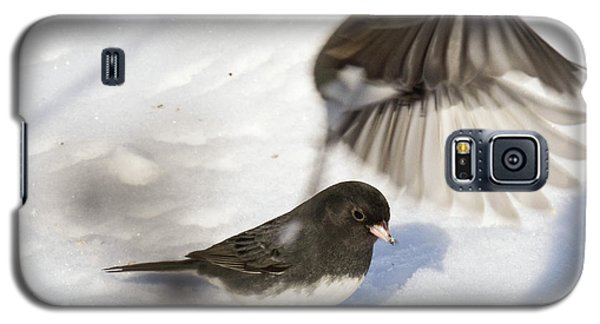 Galaxy S5 Case featuring the photograph Fly By by Gary Wightman