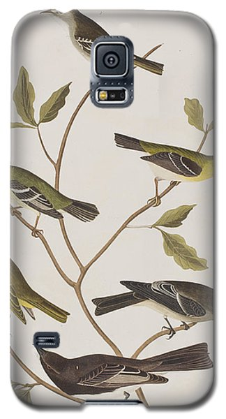 Fly Catchers Galaxy S5 Case by John James Audubon