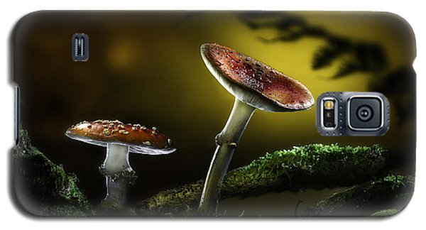 Fly Mushroom - Red Autumn Colors Galaxy S5 Case by Dirk Ercken