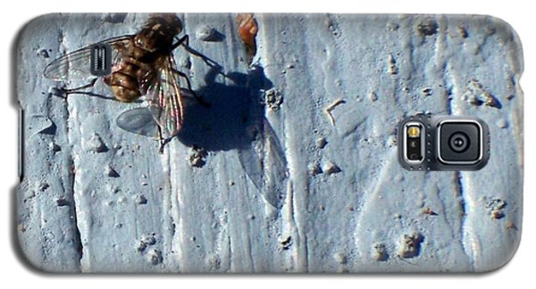 Galaxy S5 Case featuring the photograph Fly On The Wall by Betty Northcutt