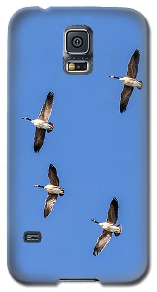 Fly Over Galaxy S5 Case