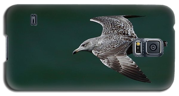 Galaxy S5 Case featuring the photograph Flyby by Richard Patmore