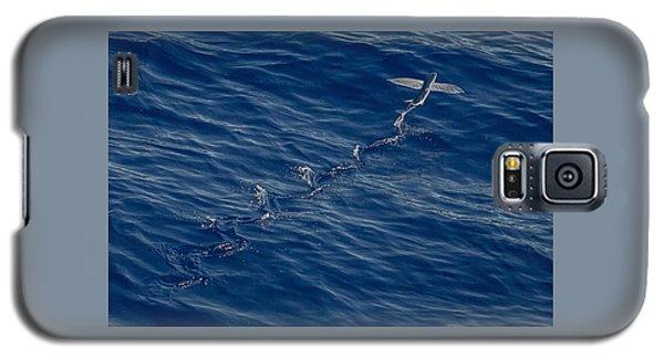Flyer Galaxy S5 Case