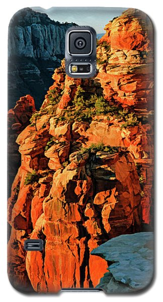 Flying Buttress 06-034 Galaxy S5 Case