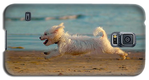 Flying Dog Galaxy S5 Case