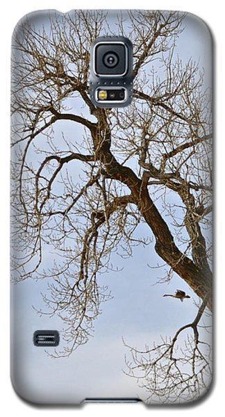Flying Goose By Great Tree Galaxy S5 Case