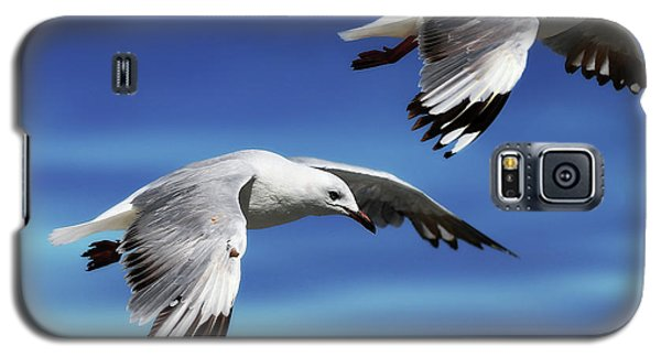 Flying High 0064 Galaxy S5 Case