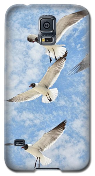 Galaxy S5 Case featuring the photograph Flying High by Jan Amiss Photography