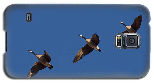 Galaxy S5 Case featuring the photograph Flying In Formation by Monte Stevens