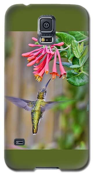 Flying Jewel Galaxy S5 Case by Kerri Farley