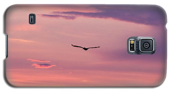 Flying Pelican At Sunset Galaxy S5 Case