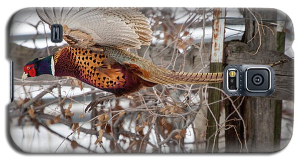 Flying Pheasant Galaxy S5 Case