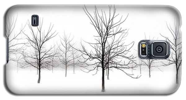 Fog And Winter Black Walnut Trees  Galaxy S5 Case by Angie Rea