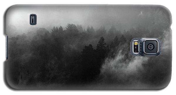 Fog Forest Galaxy S5 Case