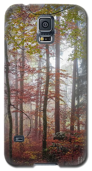 Galaxy S5 Case featuring the photograph Fog In Autumn Forest by Elena Elisseeva