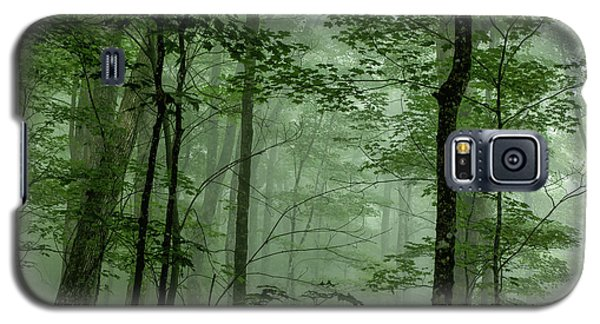 Fog In The Forest Galaxy S5 Case