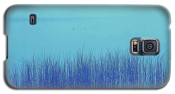 Galaxy S5 Case featuring the photograph Fog Reeds by Laurie Stewart