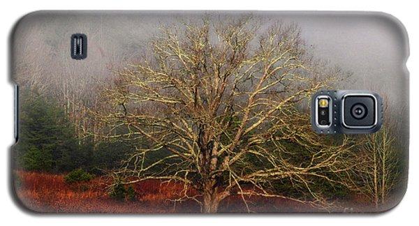 Fog Tree Galaxy S5 Case