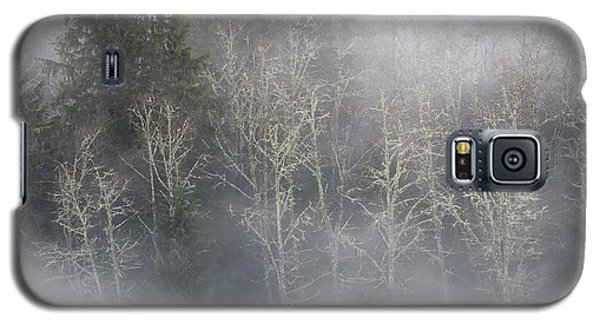 Foggy Alders In The Forest Galaxy S5 Case