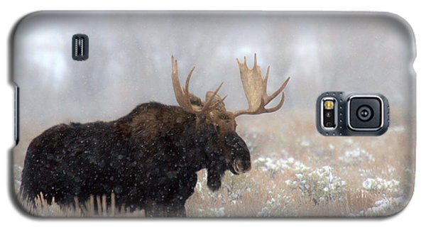 Galaxy S5 Case featuring the photograph Foggy Moose Silhouette by Adam Jewell