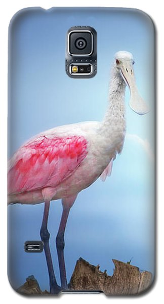Foggy Morning Spoonbill Galaxy S5 Case