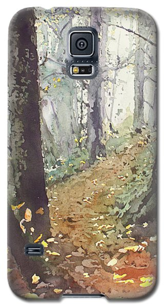 Foggy Path Galaxy S5 Case
