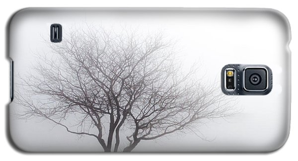 Foggy Picnic Galaxy S5 Case
