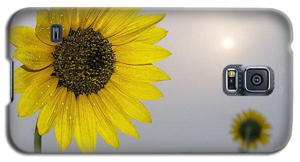 Foggy Sunflowers Galaxy S5 Case