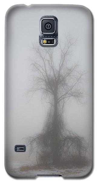 Foggy Walnut Galaxy S5 Case