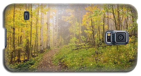 Foggy Winsor Trail Aspens In Autumn 2 - Santa Fe National Forest New Mexico Galaxy S5 Case