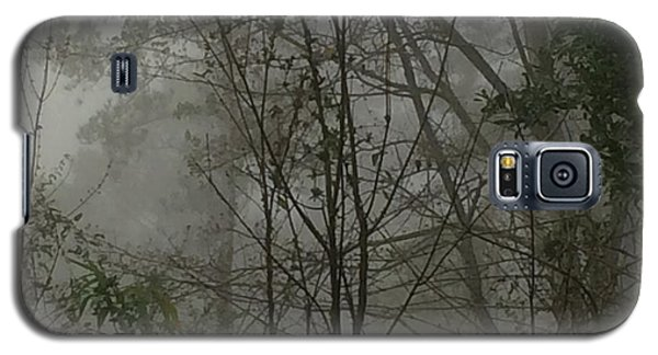 Foggy Woods Photo  Galaxy S5 Case
