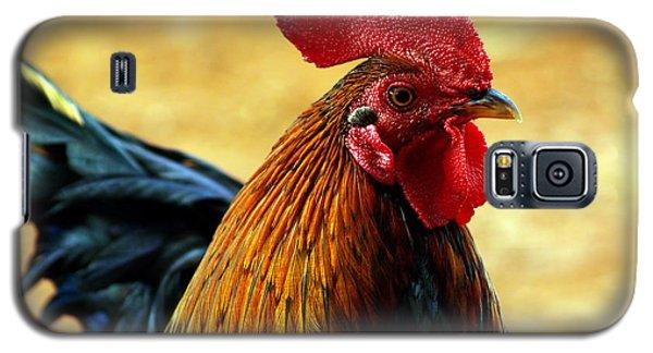 Foghorn I Galaxy S5 Case by Patricia Griffin Brett