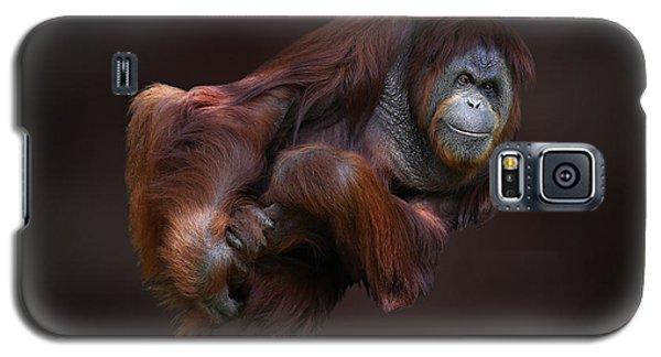 Folded Orangutan Galaxy S5 Case