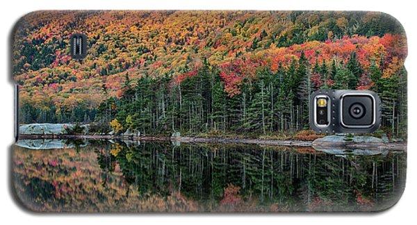 foliage at dawn on Beaver pond Galaxy S5 Case