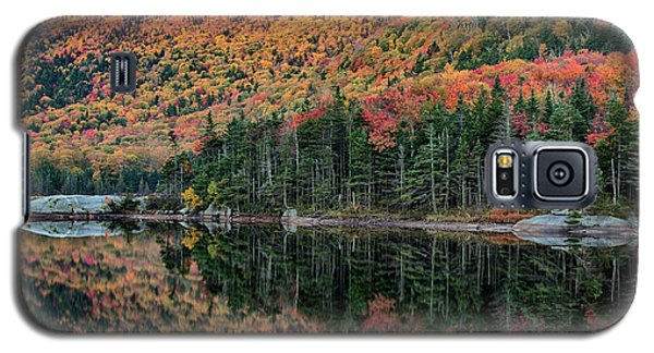 foliage at dawn on Beaver pond Galaxy S5 Case