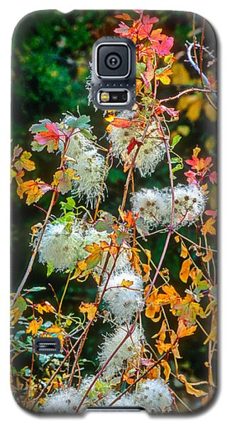 Foliage Twisted Colored Leaves Galaxy S5 Case