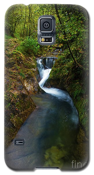 Galaxy S5 Case featuring the photograph Follow It I by Yuri Santin