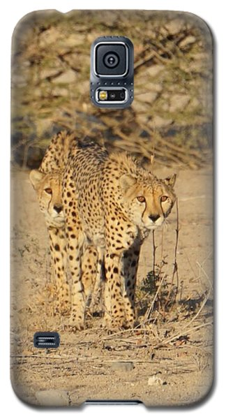 Follow The Leader Galaxy S5 Case