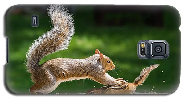 Food Fight Squirrel And Chipmunk Galaxy S5 Case