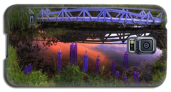 Footbridge Sunset Galaxy S5 Case