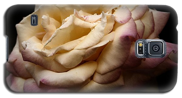 For Rose Lovers Galaxy S5 Case by Barbara Middleton