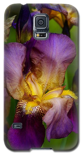 For The Love Of Iris Galaxy S5 Case